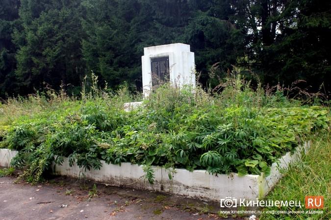 В Кинешме зарастает травой обелиск павшим на войне солдатам фото 6