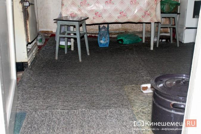 Жители дома на улице Фомина жалуются на невыносимые условия жизни фото 36