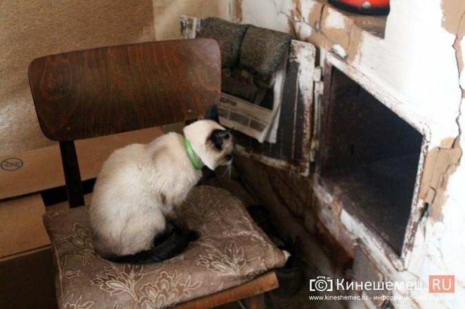 Жители дома на улице Фомина жалуются на невыносимые условия жизни фото 9