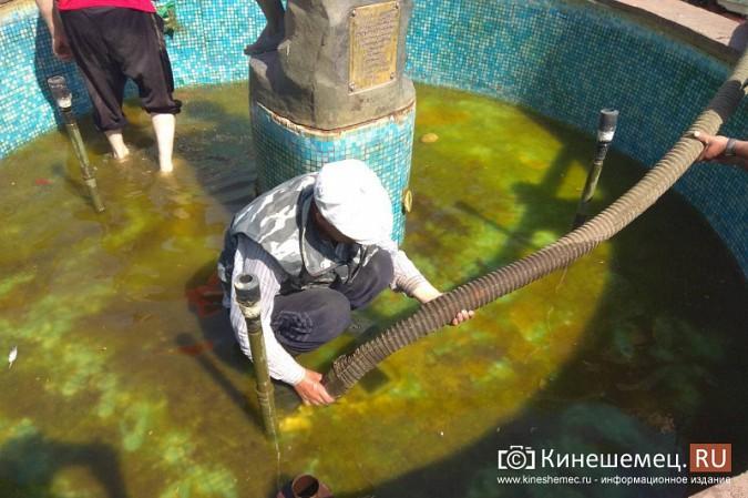 «Мальчик с рыбкой» превратился в водопой для кинешемских голубей фото 9