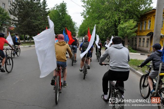 «Большой велопарад» в Кинешме собрал более 200 участников фото 24