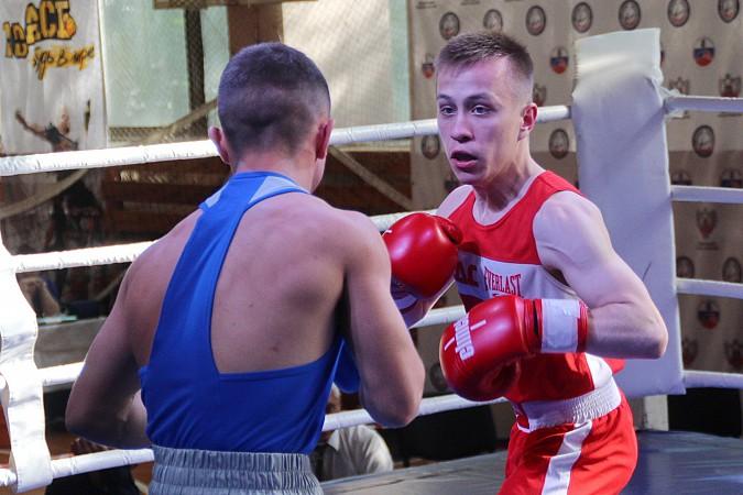 Кинешемский боксер Никита Белов взял «серебро» на чемпионате ЦФО фото 2