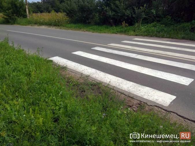 В Кинешме появился пешеходный переход в никуда фото 5