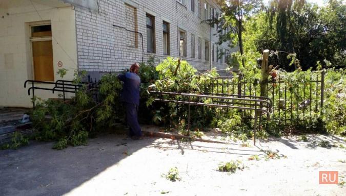 Территорию у поликлиники имени Захаровой освобождают под парковку фото 5