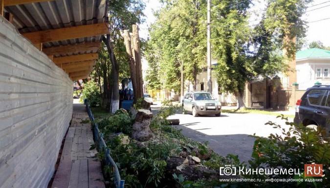 Территорию у поликлиники имени Захаровой освобождают под парковку фото 2