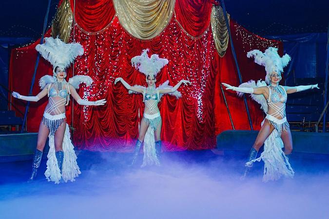 Цирк-шапито «Пегас» в Кинешме фото 2