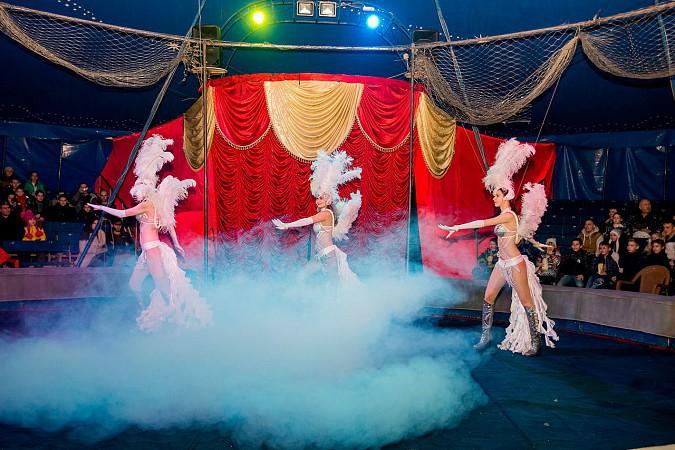 Цирк-шапито «Пегас» в Кинешме фото 3