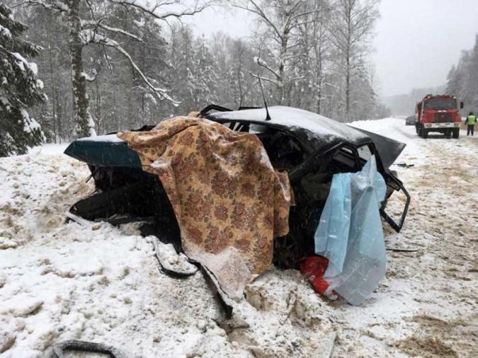 Жуткое ДТП у Малинок: двое погибших и четверо пострадавших фото 5
