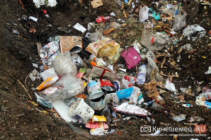 Жители «Гагарина»: сюда нужно на экскурсию туристов и администрацию привезти фото 5