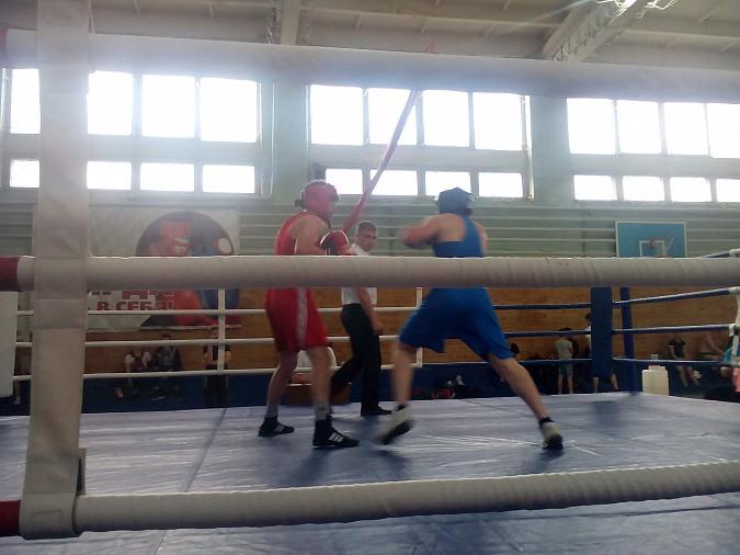 В Кинешме провели большой боксерский турнир фото 6