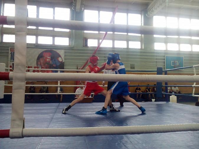 В Кинешме провели большой боксерский турнир фото 3