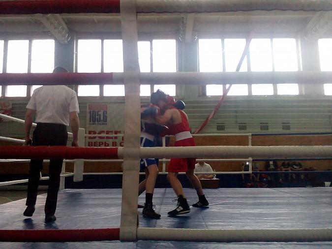 В Кинешме провели большой боксерский турнир фото 5