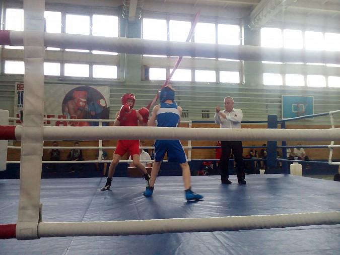 В Кинешме провели большой боксерский турнир фото 4