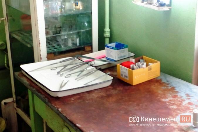Девушка - патологоанатом из Кинешмы вышивает крестиком и читает Гете фото 4