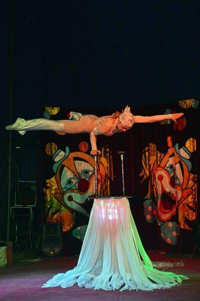 Сибирский цирк «Шапито» приглашает Кинешемцев фото 12