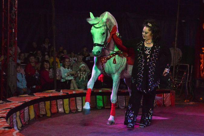Сибирский цирк «Шапито» приглашает Кинешемцев фото 3