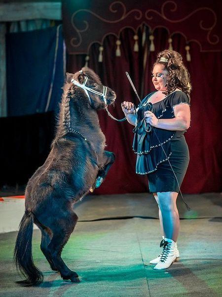 Сибирский цирк «Шапито» приглашает Кинешемцев фото 19