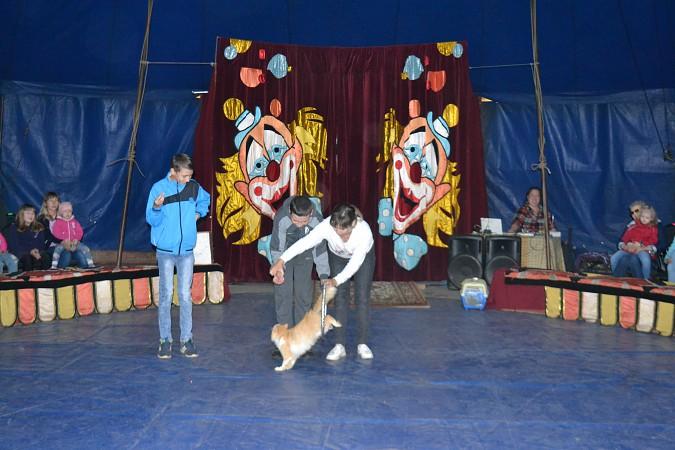 Сибирский цирк «Шапито» приглашает Кинешемцев фото 23