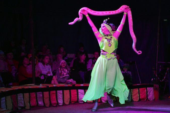 Сибирский цирк «Шапито» приглашает Кинешемцев фото 5