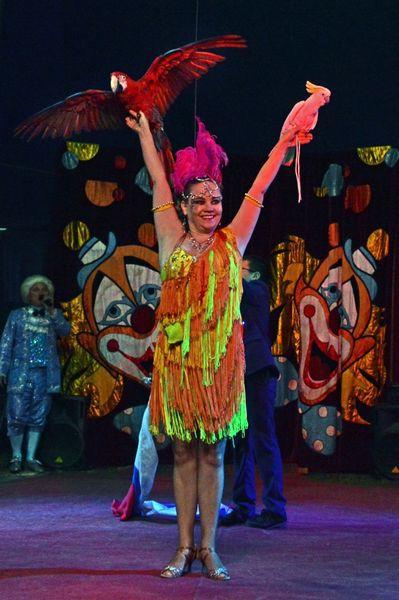 Сибирский цирк «Шапито» приглашает Кинешемцев фото 17