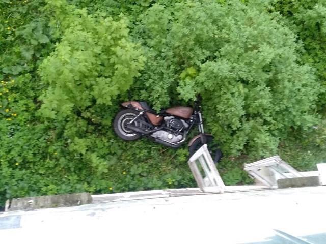 В кустах в Иванове нашли «Harley-Davidson» фото 2
