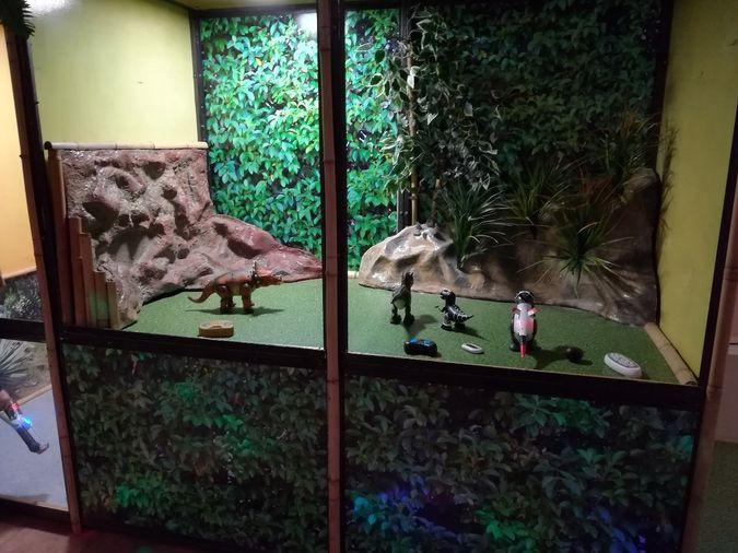 Впервые в Кинешме Робозоопарк фото 9