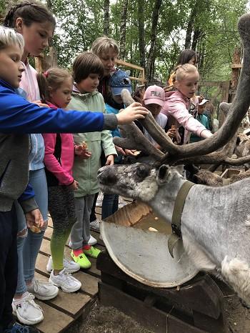 Парк животных близ Кинешмы фото 24
