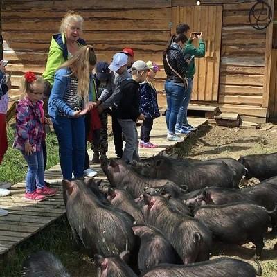 Парк животных близ Кинешмы фото 21