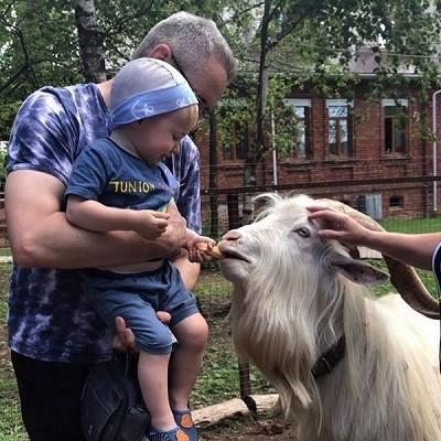 Парк животных близ Кинешмы фото 22