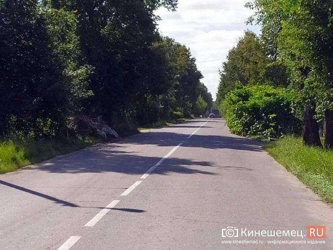 В Кинешме живая изгородь «захватила» автомобильную дорогу фото 4