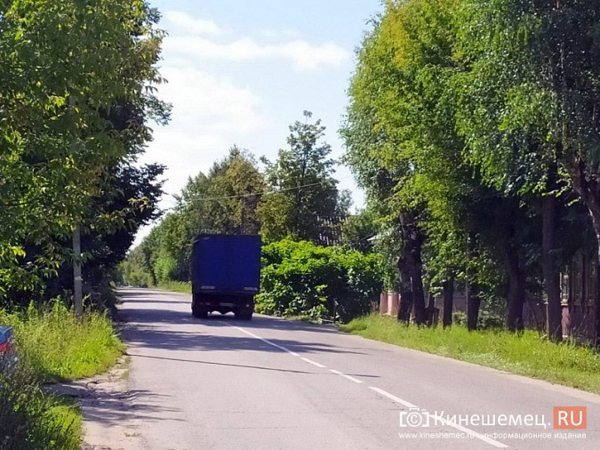 В Кинешме живая изгородь «захватила» автомобильную дорогу фото 5