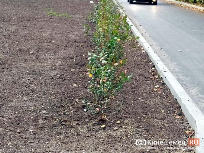 На «Поликоре» жители обратили внимание на узкие тротуары кинешемского Арбата фото 9