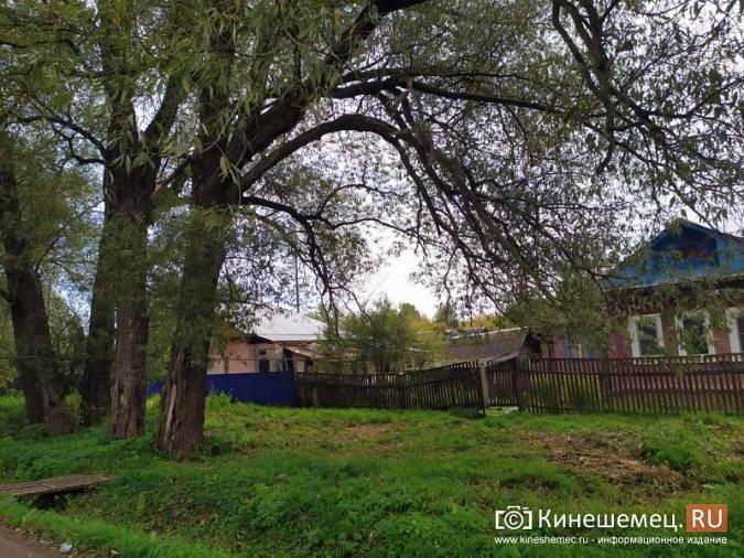 Благоустройство Кинешмы XXI века: жители улицы Третьяковской живут в грязи и в темноте фото 14