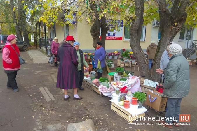 В Кинешме разгоняют микрорынок, где бабушки зарабатывали крохи к пенсии фото 14