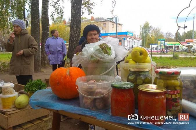В Кинешме разгоняют микрорынок, где бабушки зарабатывали крохи к пенсии фото 16