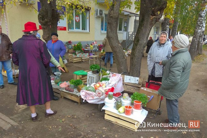 В Кинешме разгоняют микрорынок, где бабушки зарабатывали крохи к пенсии фото 8