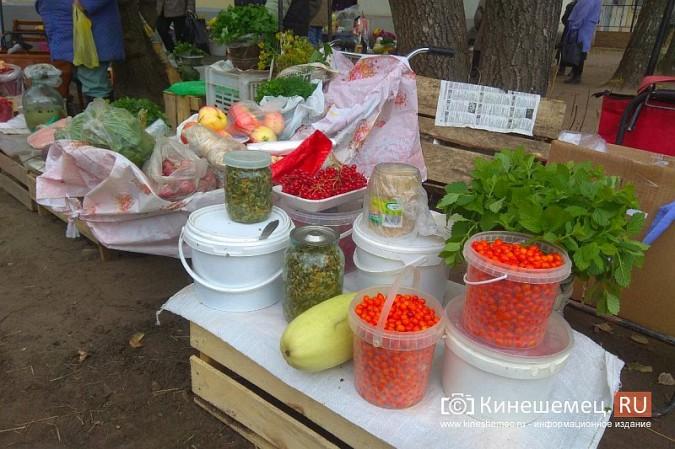 В Кинешме разгоняют микрорынок, где бабушки зарабатывали крохи к пенсии фото 12