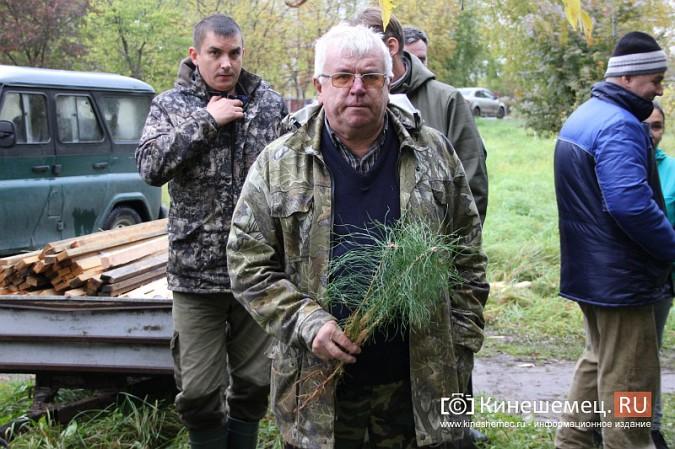 500 сосен высадили в сквере на улице Гагарина фото 2