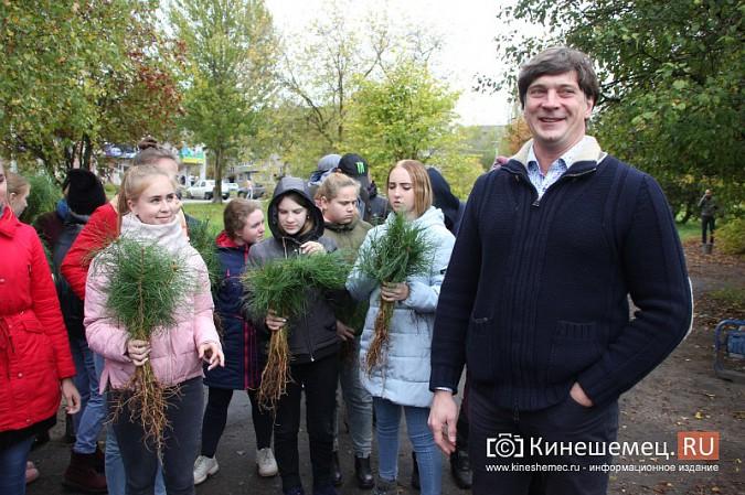 500 сосен высадили в сквере на улице Гагарина фото 8