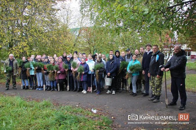 500 сосен высадили в сквере на улице Гагарина фото 6