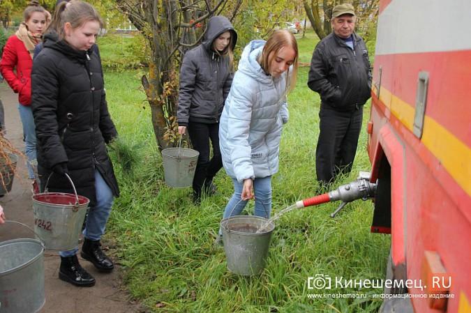 500 сосен высадили в сквере на улице Гагарина фото 9