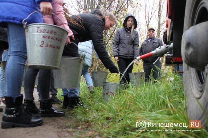 500 сосен высадили в сквере на улице Гагарина фото 10