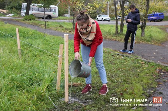 500 сосен высадили в сквере на улице Гагарина фото 16