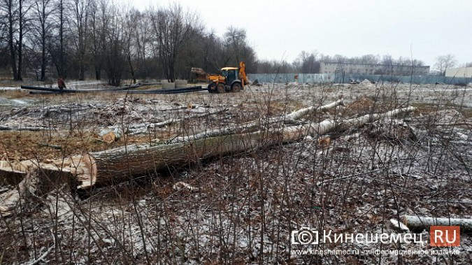 На «Лесозаводе» строители устроили лесоповал при возведении торгового центра фото 6