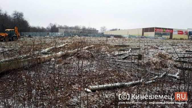 На «Лесозаводе» строители устроили лесоповал при возведении торгового центра фото 5