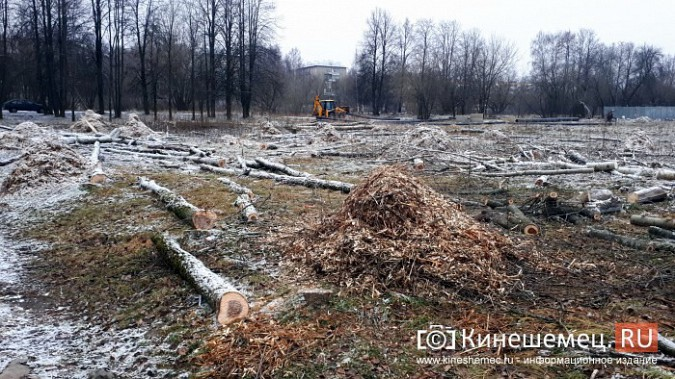 На «Лесозаводе» строители устроили лесоповал при возведении торгового центра фото 10
