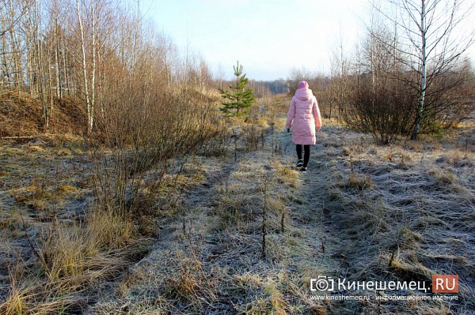 Многодетная мама из Кинешмы готова жаловаться Путину на ситуацию с выделением участков фото 11