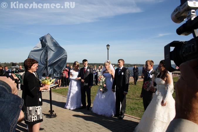 Мэрия Кинешмы дала указание срезать замки с «дерева любви» на Волжском бульваре фото 18