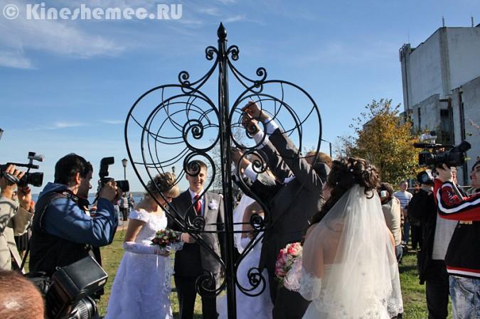 Мэрия Кинешмы дала указание срезать замки с «дерева любви» на Волжском бульваре фото 15