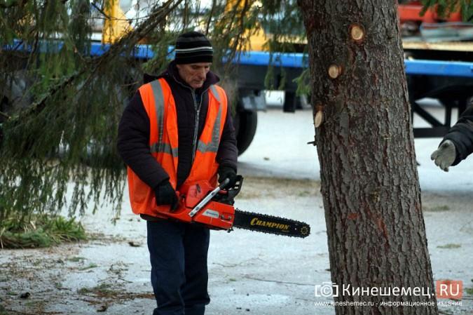В Кинешму привезли главную новогоднюю елку фото 27